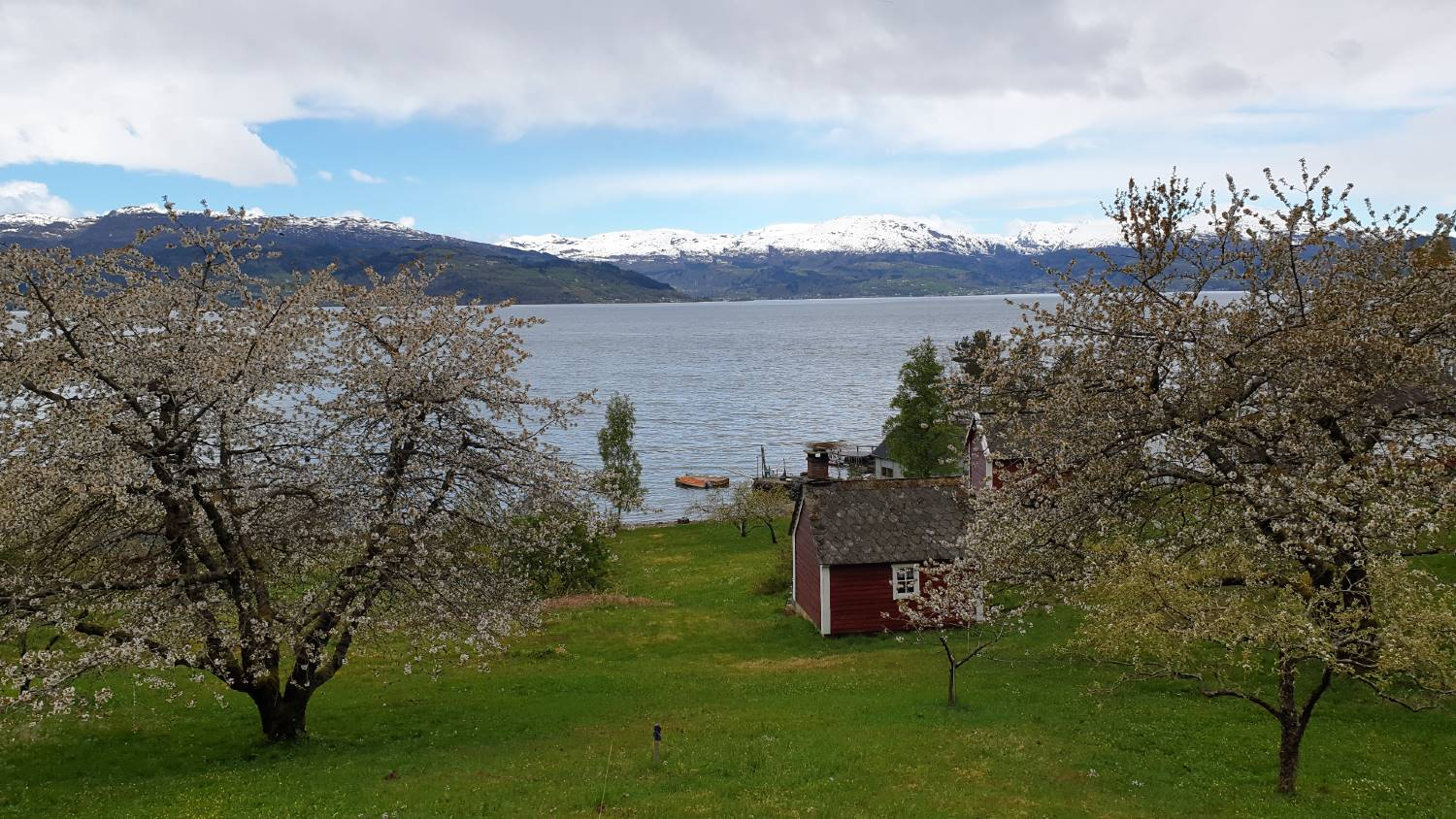 Road trip from Bergen to Hardanger - Norway's orchard
