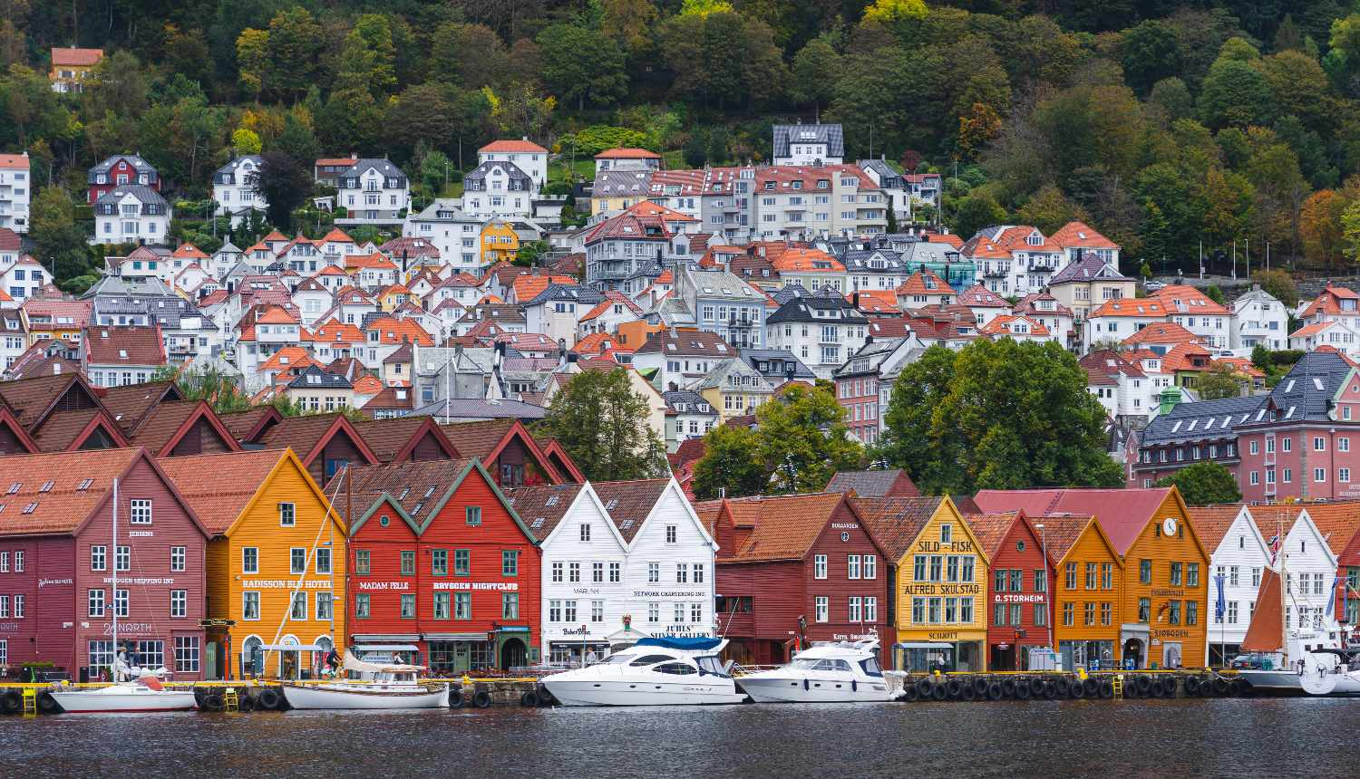 Things to do in Bergen - Bryggen Unesco Site