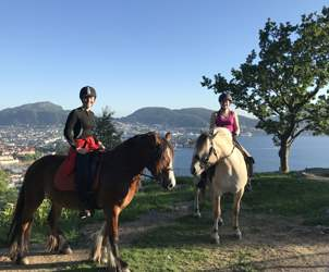 Explore the beautiful nature around Bergen from the horseback.