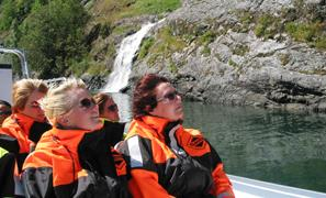 Thumbnail for Standard fjord tour from Bergen