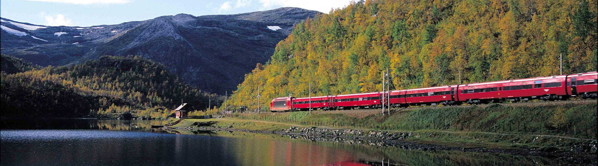 The Bergen Railway (Bergensbanen)