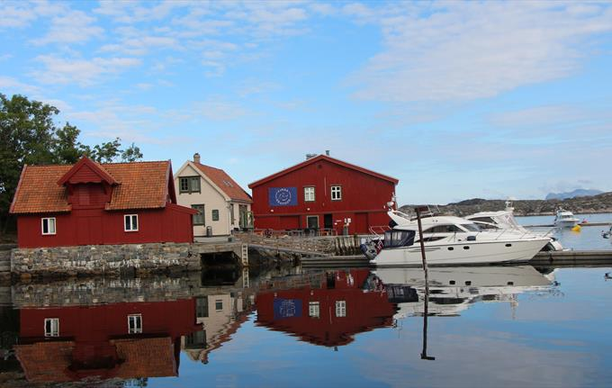 Magical half-day tour to Skjerjehamn