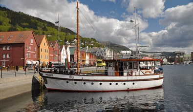 The Fjords - fjordcruise and fishing on your own!