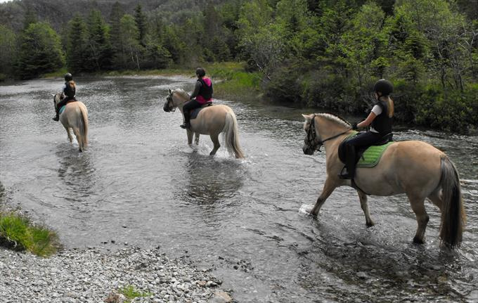Horseback riding in beautiful surroundings