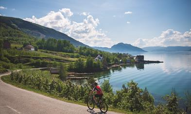 Cycling along the banks of The Hardangerfjord